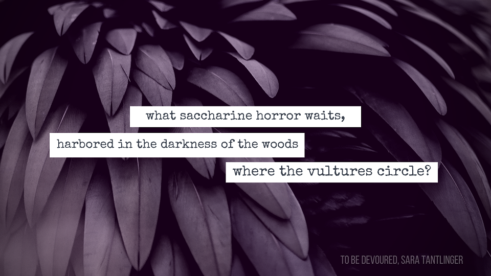 """""""What saccharine horror waits, harbored in the darkness of the woods where the vultures circle?"""""""